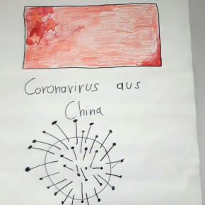 Corona Virus - Eine Gefahr für HAK-Steyr?